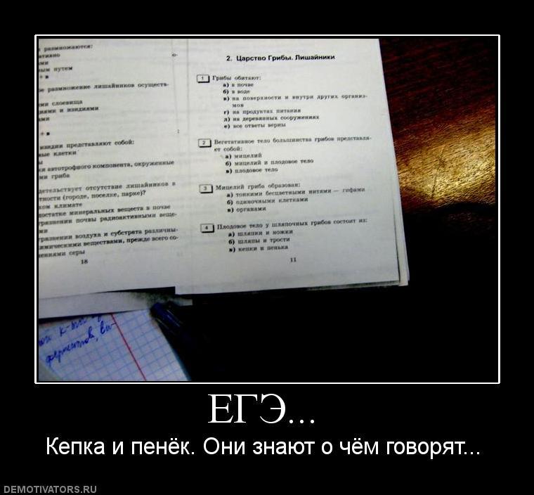 результаты егэ2014 по русскому языку
